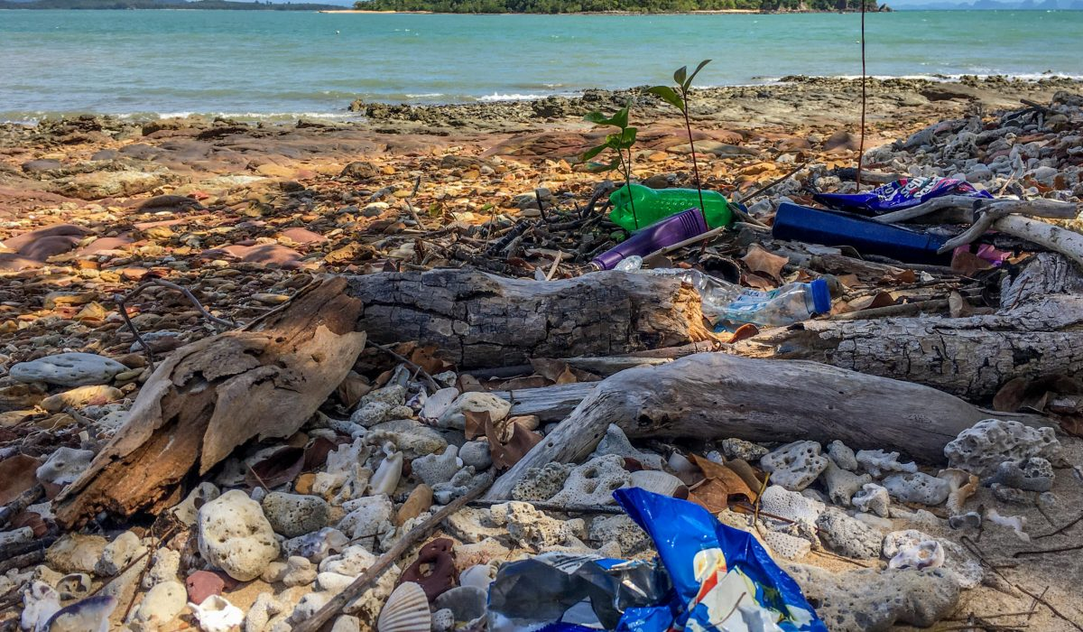 Waste Reduction plastic pollution ©Martin Hinteregger
