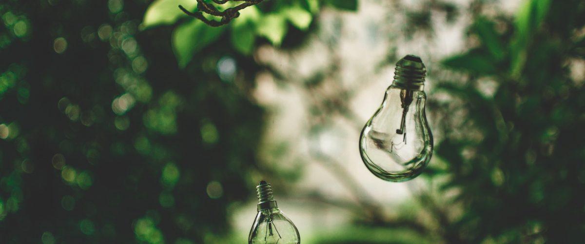 light-bulb-2598469_1920